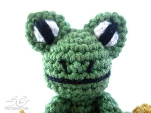 Stitched On Frog Eyes and Mouth